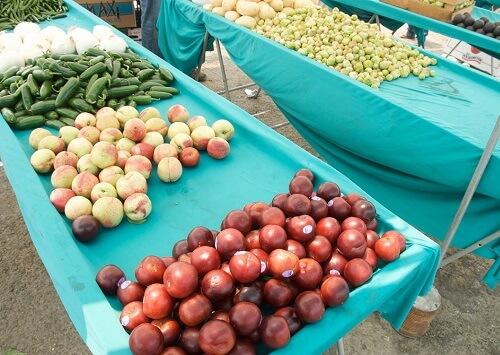 Improving Fruit & Veggie Access for Pregnant WIC Moms